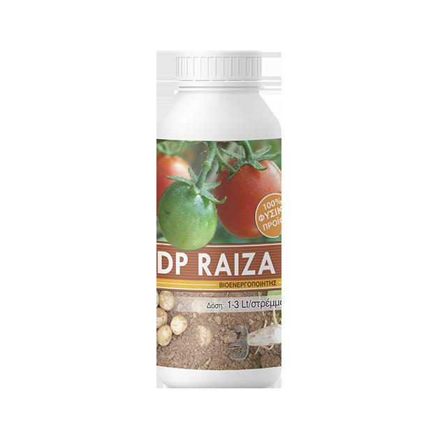 DP-RAIZA