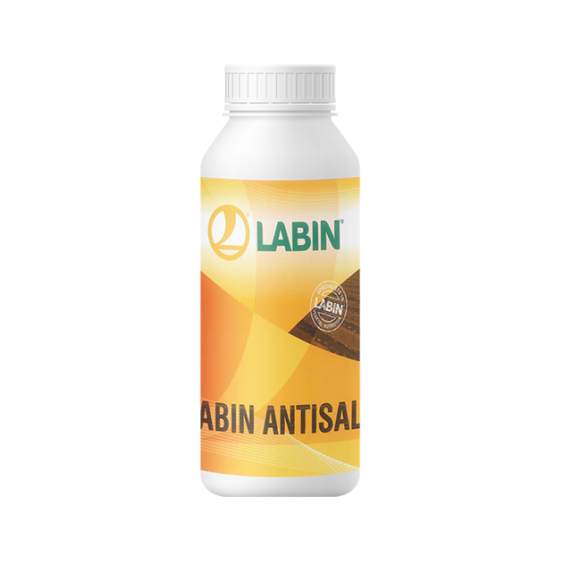 LABIN-ANTISAL