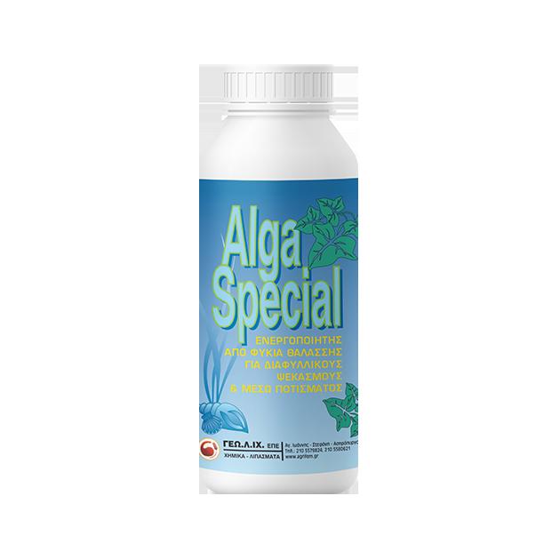 ALGA-SPECIAL